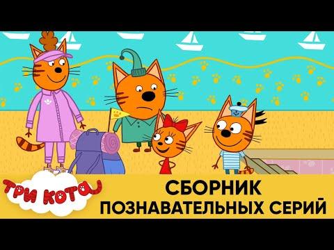 Три Кота   Сборник познавательных серий   Мультфильмы для детей 2020 - Видео онлайн