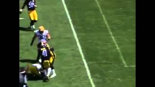nfl elite wr jordy nelson tears acl preseason packers vs steelers 2015 nfl preseason game injury