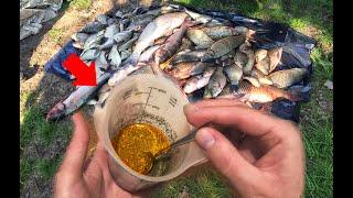 Секретный способ как наловить рыбы больше всех самодельный аттрактант и активатор клева