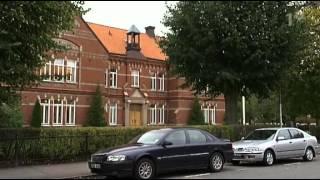Polisbilsolyckan i Härskogen utanför Göteborg Uppdrag granskning 2006