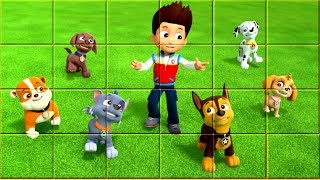 Paw Patrol Game - Video for Kids - Nice Blocks Puzzle