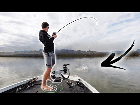Fishing A HIDDEN Micro Lake In The DESERT -- (Big Send Part 1)