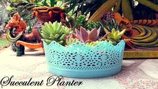 Video Make a Beautiful Succulent Planter in 5 Minutes download MP3, 3GP, MP4, WEBM, AVI, FLV Juni 2018