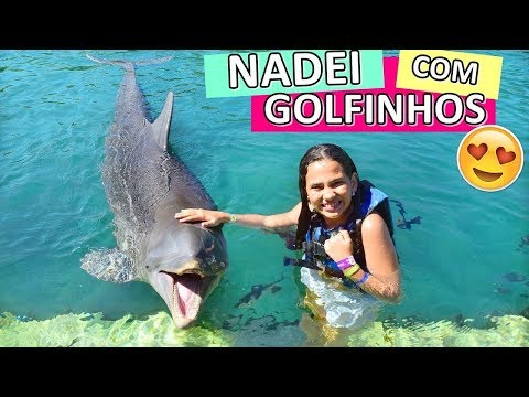 Nadando com Golfinhos REAL - Bela Bagunça