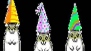 Birthday Hamster Dance!