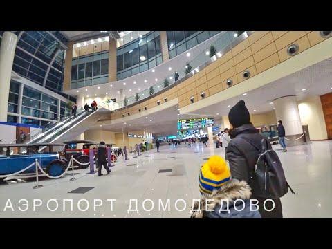 Аэропорт Домодедово: как добраться, где поесть, где отдохнуть и немного истории