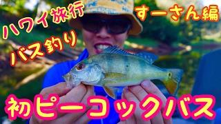 [ハワイ旅行でバス釣り]スーさん初のピーコックバスを狙う![ウィルソン湖スーさん編] thumbnail