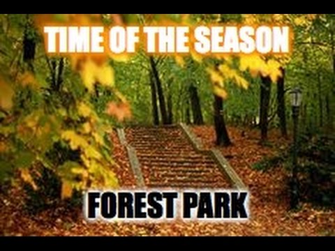 Time of the Season - Forest Park