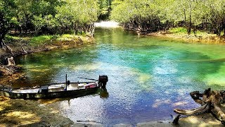 Perils to Paradise - 118 Miles on the Choctawhatchee River