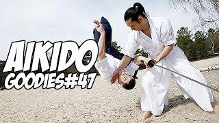 Aïkido : Léo Tamaki, l