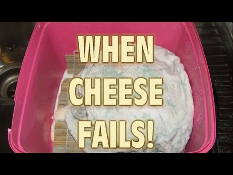 When Cheese Making Fails!