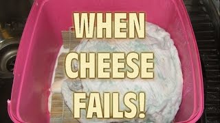 make cheese at home