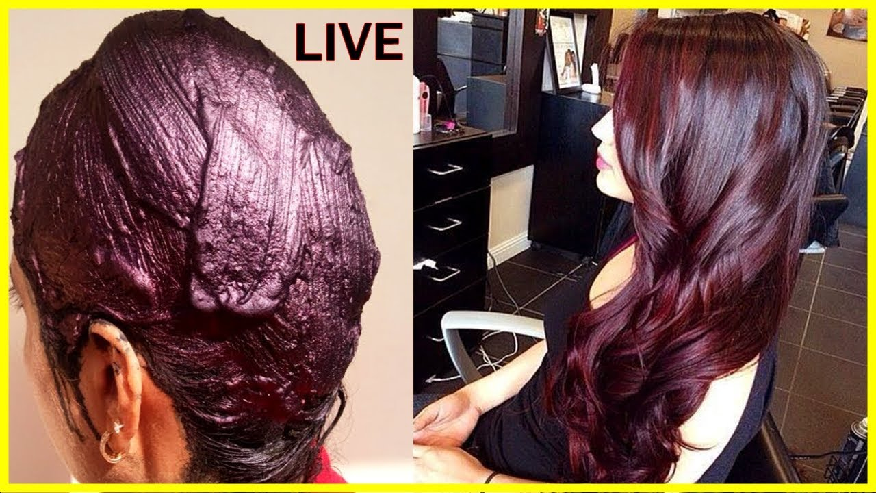 100 Pure Burgundy Color With Heena Powder Natural Maroon Hair