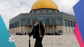 شؤون فلسطينية .. برنامج جديد على شاشة التلفزيون العربي│شبابيك