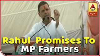 MP Elections: Requested PM to waive off farmers' loans, he didn't utter a word: Rahul Gandhi