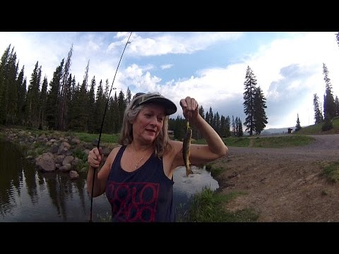 Grand Mesa Colorado Fishing & Camping