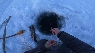 Отчёт с рыбалки 20 12 2020 45