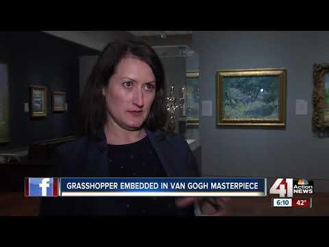 Grasshopper found embedded in van Gogh masterpiece