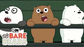 We Bare Bears | รวมฮิตก๊วนหมีวัยเบบี้ | Cartoon Network