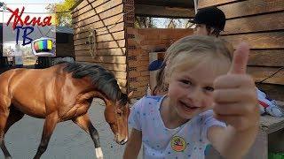 Лошади Детский канал Верховая езда для детей Женя видео влог