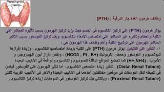 هرمون الغدة جار الدرقية Parathyroid Hormone