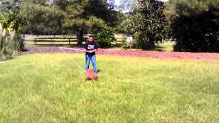 Fun Dog Training - Charlie And The Crazy Stick Training Game!!!!