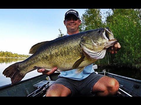 Topwater Bass Fishing Blowups Series 6 - 50 Big Bass Strikes
