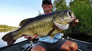 Topwater Bass Fishing Blowups Series 6   50 Big Bass Strikes