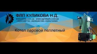 Паровой котел РИ-5 перед ремонтом и рестоврацией(, 2017-06-20T20:58:07.000Z)