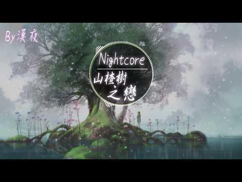 【Nightcore】程jiajia - 山楂樹之戀『動態歌詞版』♪也不能深陷情海 為了你的那一半♪