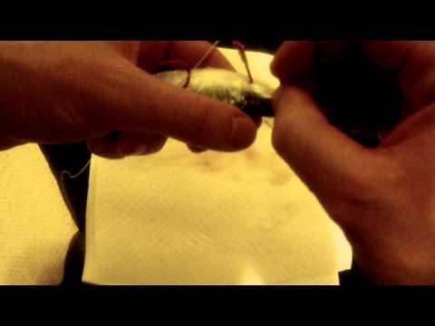 salmon flasher hook up