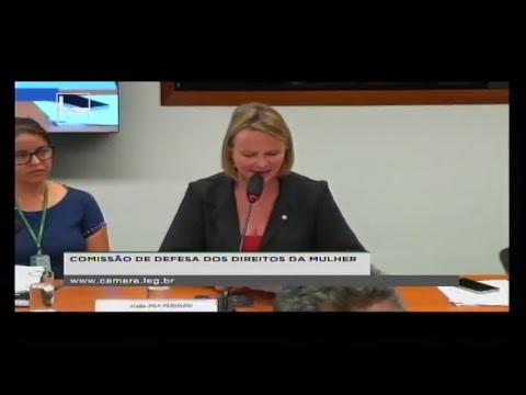 DEFESA DOS DIREITOS DA MULHER - Reunião Deliberativa - 20/06/2018 - 15:54