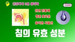 [침의유효성분] 탄수화물 소화효소 아밀라아제 ㅣ 음이온…
