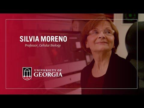 2018 Distinguished Research Professor - Silvia Moreno