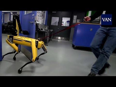 """Esta es la respuesta al acoso a los robots de """"Boston Dynamics"""""""