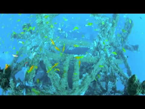 T BARGE YOUTH DAY DIVE