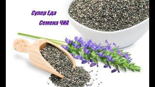 Супер Семена ЧИА - Природной Энергетик что приготовить Полезные Простые Рецепты Сhia Seeds