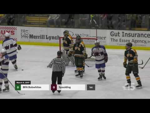 D1 VT Hockey Finals - BFA vs Spaulding 3/9/2017