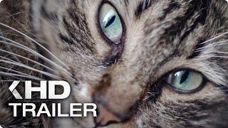 KEDI: Von Katzen und Menschen Trailer German Deutsch (2017)