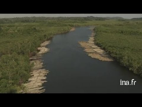Gabon : flottage du bois près de Port Gentil