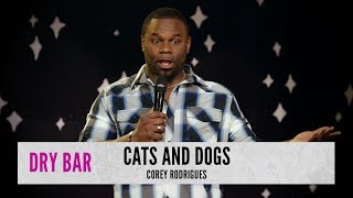 Cats are better than dogs. Corey Rodrigues.