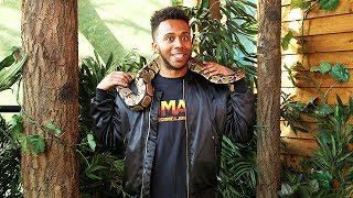 I TOUCHED the WORLDS LARGEST SNAKE 😲🐍
