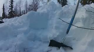 снегоход тайга варяг 500 зарылся