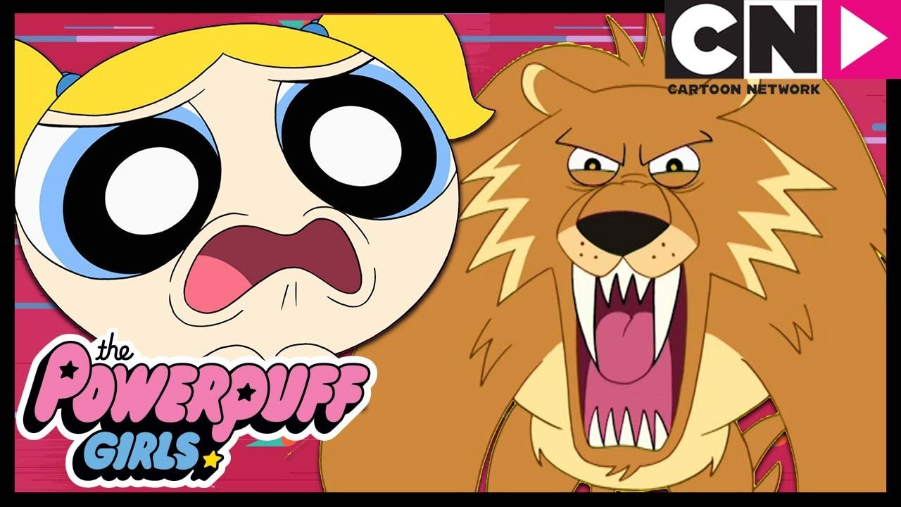 Powerpuff Girls   Cat Video Goes VERY Wrong!🙀   Cartoon Network ...