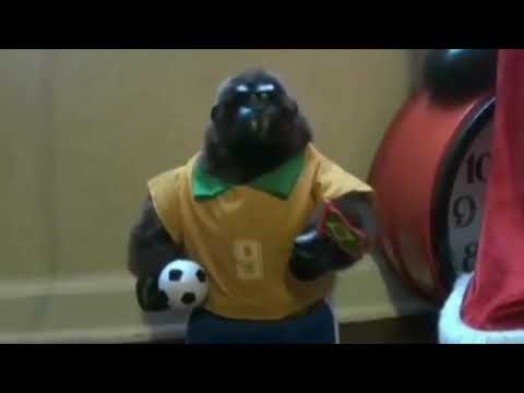 Dancing gorrila world cup Brazil (HQ AUDIO) (READ DESCRIPTION)