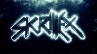 Skrillex - Best Songs Remixes 2014 - HD | 1 Hour |
