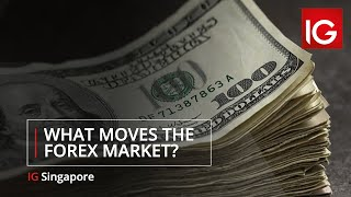 What Moves the Forex Market? Learn to trade | IG Academy