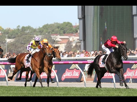 Victorya derby |  Melbourne Cup Day Preview |  7 November 2017
