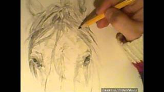 hamadan speed drawing