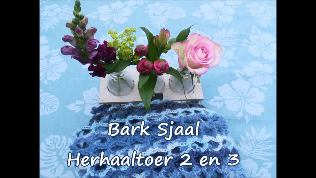 Bark Sjaal Herhaaltoer 2 En 3 En Diagram Uitleg